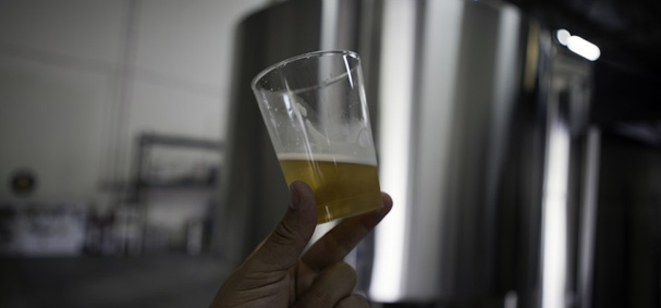 A glass of beer is raised toward the light to show it's clarity.