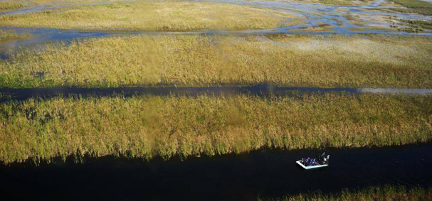 Sawgrass Recreational Park Aerial