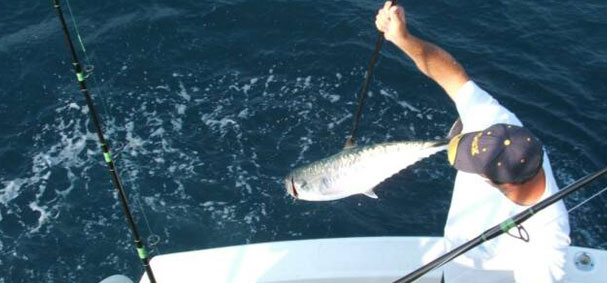 Get hand on experience working directly with the mate on a deep sea fishing excursion in Miami.