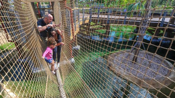 A couple walks there child over a bridge at Zoo Miami.